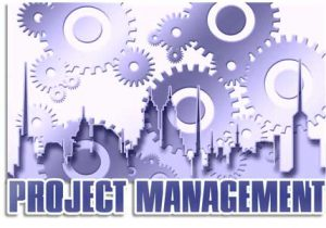 Specialized Standards - Quality Management in Projects